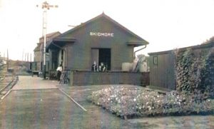Photograph of the train depot at Skidmore, Missouri, some time in the early 1900s. A flower bed is in place in front of the depot.