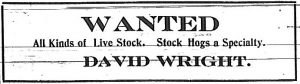 Wanted - All kinds of live stock.  Stock hogs a specialty.  David Wright.