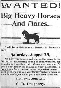 Wanted!  Big heavy horses and mares. I will be in Skidmore at Barrett & Dawson's barn, Saturday, August 25, to buy your horses and mares, the same to be fat but not necessarily sound or good workers, for Dougherty buys them all.  Come and see me. If you do not know me inquire of your neighbors.  I do not say I am the best horse buyer that comes to your country but you will think you have been to see a horse buyer when you have been to see me.  Come one, come all.  G. B. Dougherty.